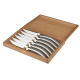 Set of 6 Stylver sandblasted stainless steel knives